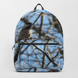 November 1 Backpack