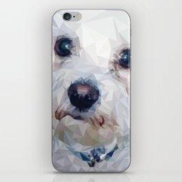 Roscoe Dog iPhone Skin