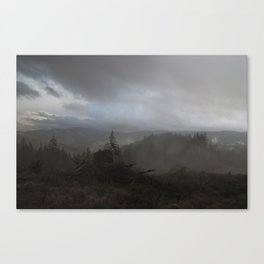 Lament: Renewal Canvas Print