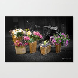 Bicycle and Flowers Canvas Print