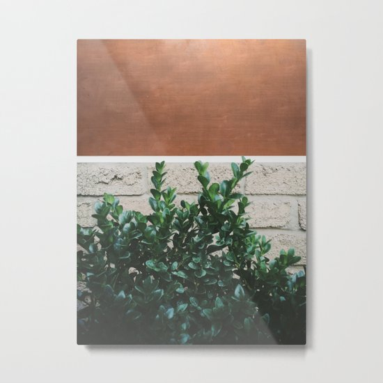 Plant + Copper #society6 #buyart #decor Metal Print