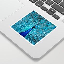 Peacock  Blue 11 Sticker