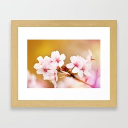 Blooming fairy cherry tree flowers Framed Art Print