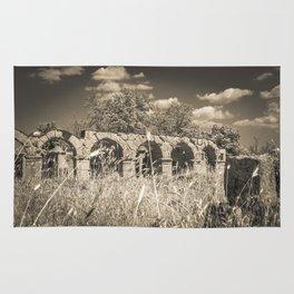 Roman amphitheatre Rug