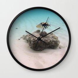 Tropical Maldives White Sand Lagoon Coral Fish Wall Clock