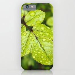 Plant Patterns - Green Scene iPhone Case