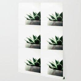 Simply Succulent Wallpaper