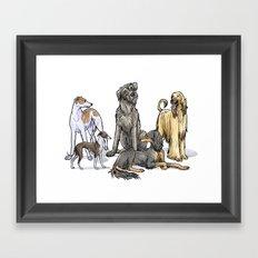 Graceful Sighthounds Framed Art Print