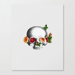 S&R Canvas Print