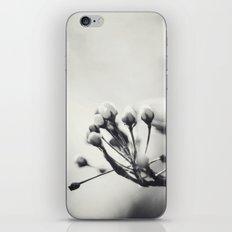 Spring II in Sepia iPhone & iPod Skin