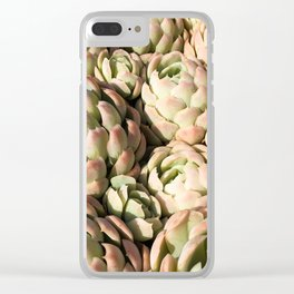 Mexico - Succulents Pink Clear iPhone Case