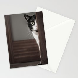 Peaking Cat Stationery Cards