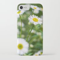 daisies iPhone & iPod Cases featuring Daisies by Michelle McConnell