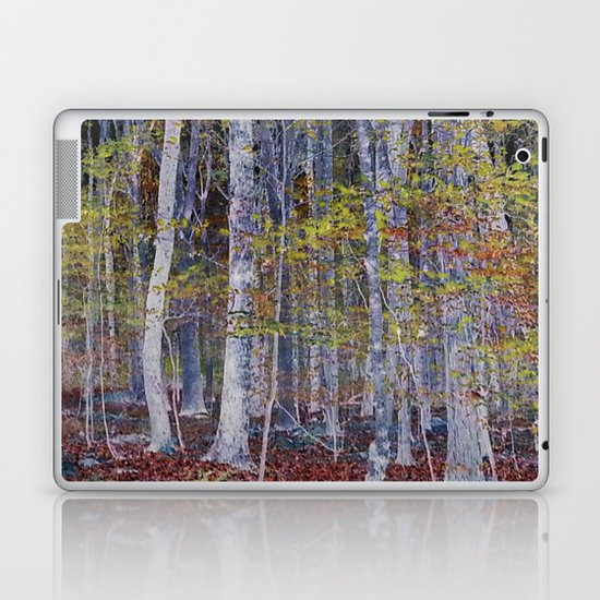 You Hiked while I Stood Still Laptop & iPad Skin