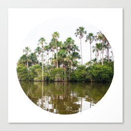 Rainforest Palms over Peruvian Amazon Circle Fine Art Print Canvas Print