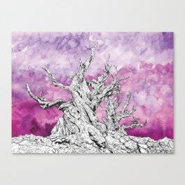 Yggdrasil Dawn Canvas Print