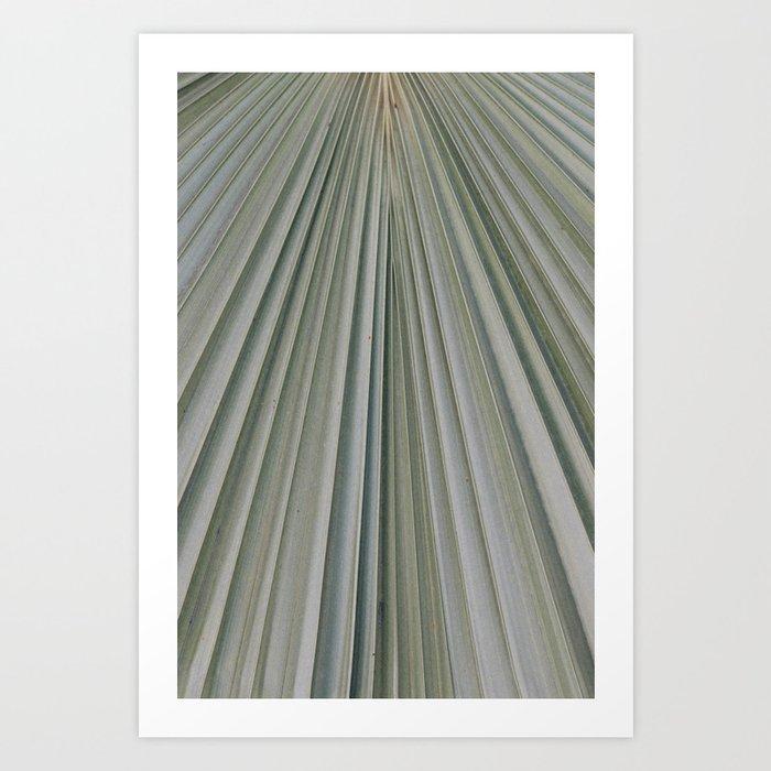 palm patterns pale Art Print