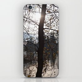 Scenic lake view iPhone Skin