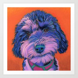 Winnie the schnoodle Art Print