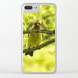 Male Western Tanager, No. 1 Clear iPhone Case