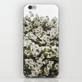 Demure Dogwood iPhone Skin