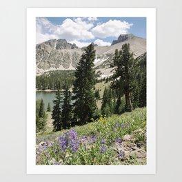 Nevada Summer Wildflowers Art Print
