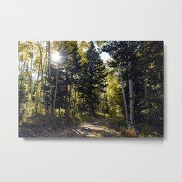 Fall - 3 Metal Print