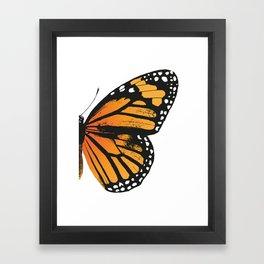 Monarch Butterfly | Right Butterfly Wing | Vintage Butterflies | Framed Art Print