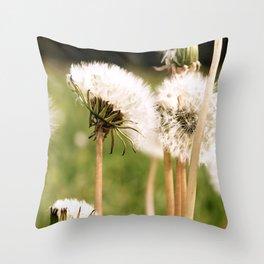 Lion's Den Throw Pillow