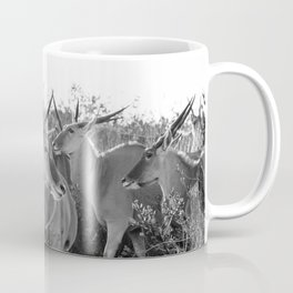 Herd of Eland stand in tall grass in African savanna Coffee Mug