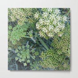 green wild flowers Metal Print