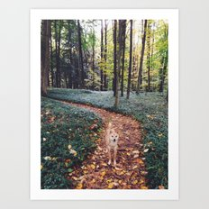 In the Woods Art Print