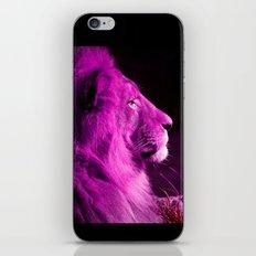 Pretty Kitty in Purple iPhone & iPod Skin