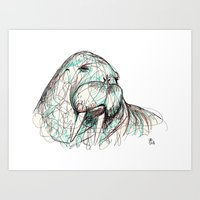 walrus Art Prints featuring Walrus by Ursula Rodgers