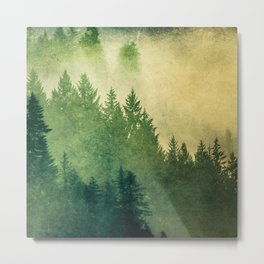 Nature Hike Metal Print