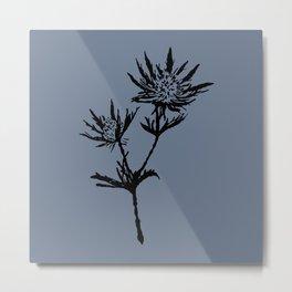 Black thistle with grey Metal Print