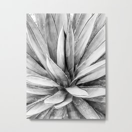 Succulents // Black and White Cactus Plant Leaves Close Up Horizontal Metal Print