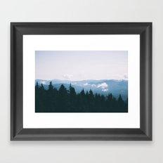 Forest XXIII Framed Art Print