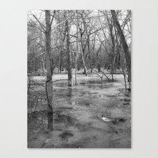 Ice swamp Canvas Print