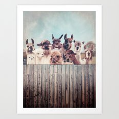 HAPPY FAMILY - ALPACA & LLAMA Art Print
