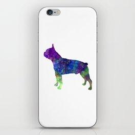 Boston Terrier 02 in watercolor iPhone Skin