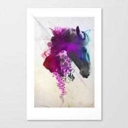 Mo Chroí  Canvas Print
