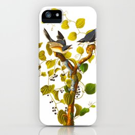 Loggerhead Shrike Bird iPhone Case