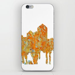 Albuquerque, New Mexico Skyline - Rust iPhone Skin