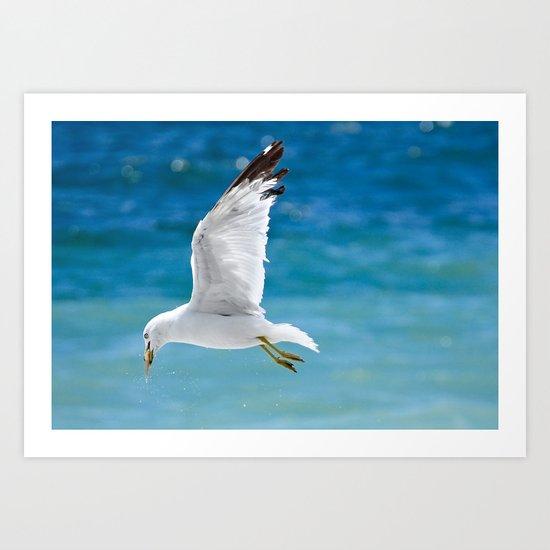 Gull with Fish Art Print