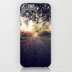Path III iPhone 6s Slim Case