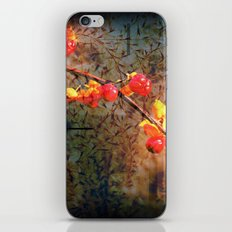 Fields Of Red Berries In The Evening iPhone & iPod Skin
