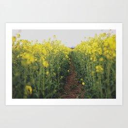 Secret Path Art Print