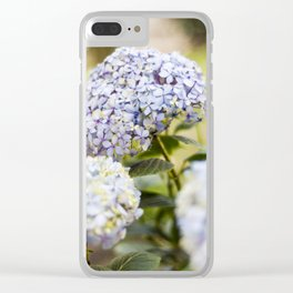 Hydrangeas of my garden Clear iPhone Case