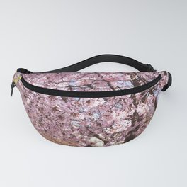 Cherry Blossoms at Edwards Gardens on April 19th, 2021. IV Fanny Pack